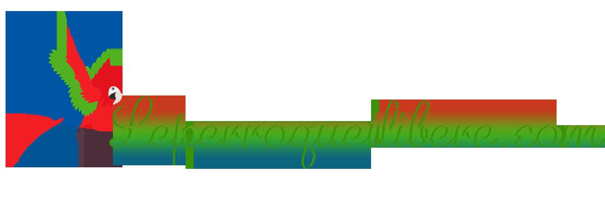 Leperroquetlibere.com: média généraliste sans langue de bois